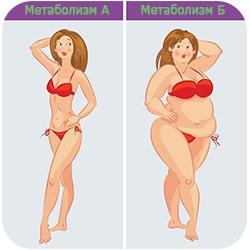 Ускорение Метаболизма А и Б