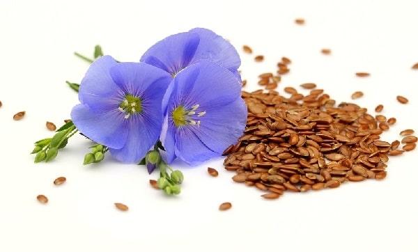 Семена льна снижают олестерин