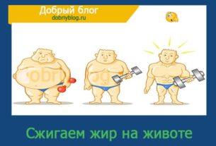 Что лучше всего сжигает жир на животе