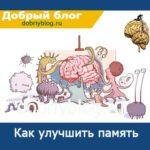 Как Улучшить Память Мозга 7 Восхитительных (Шикарных) Способа