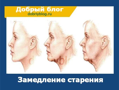 Как не стареть