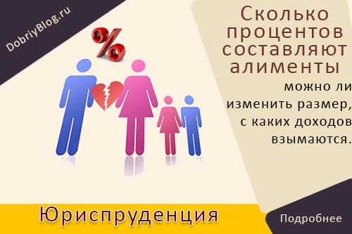 Сколько процентов от зарплаты составляют алименты на 1 ребёнка